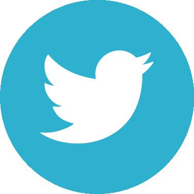 SocialLinks Twitter VW